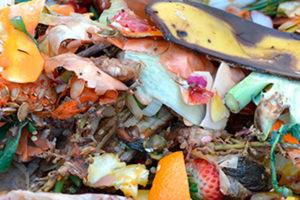 La gestión diferenciada de los biorresiduos: la tarea que hemos dejado para el último